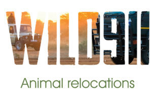 Introducing Wild911 wildlife relocation experts